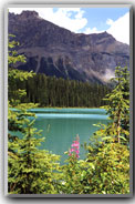 Emerald Lake, CAN
